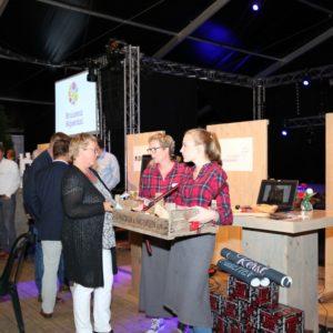 Business_Festival_Bruisend_Nijverdal_2017 (16)